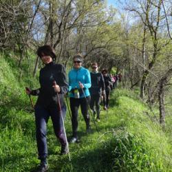 17-03-26 Fete du printemps a Belcastel 09h54 46