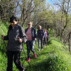 17-03-26 Fete du printemps a Belcastel 09h55 27