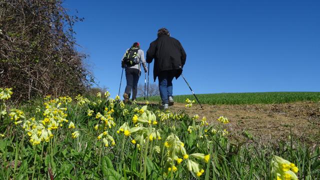 17-03-26 Fete du printemps a Belcastel 11h33 23