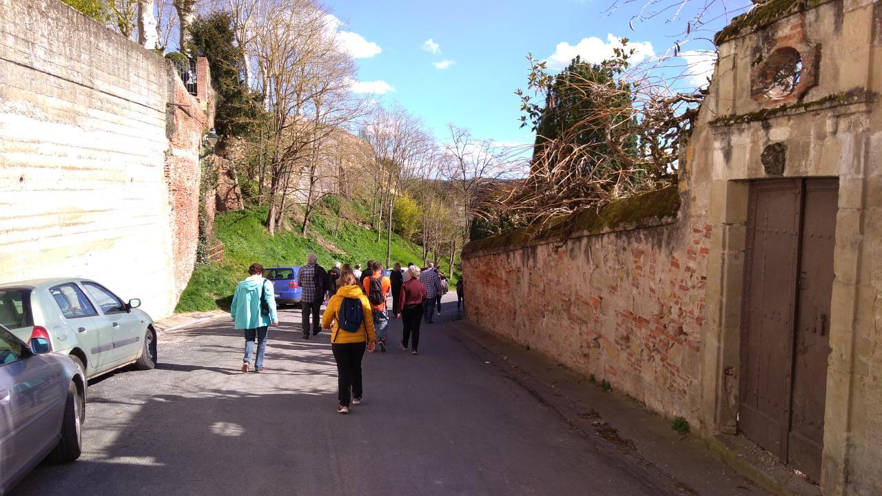 Sortie Marche Nordique touristique LAVAUR 11-mars